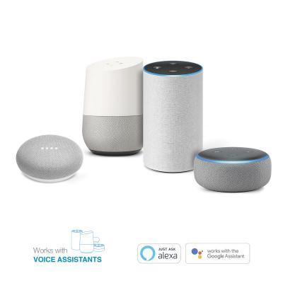 assistant vocaux alexa et google home
