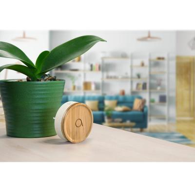 Carillon bambou à coté d'un pot de fleur